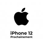 Remplacement Batterie iPhone 12 Mini