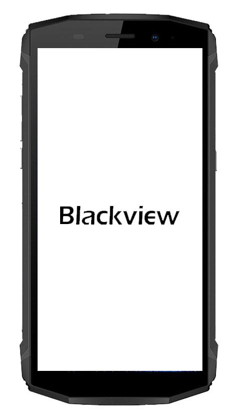 écran balckview BV9700 pro